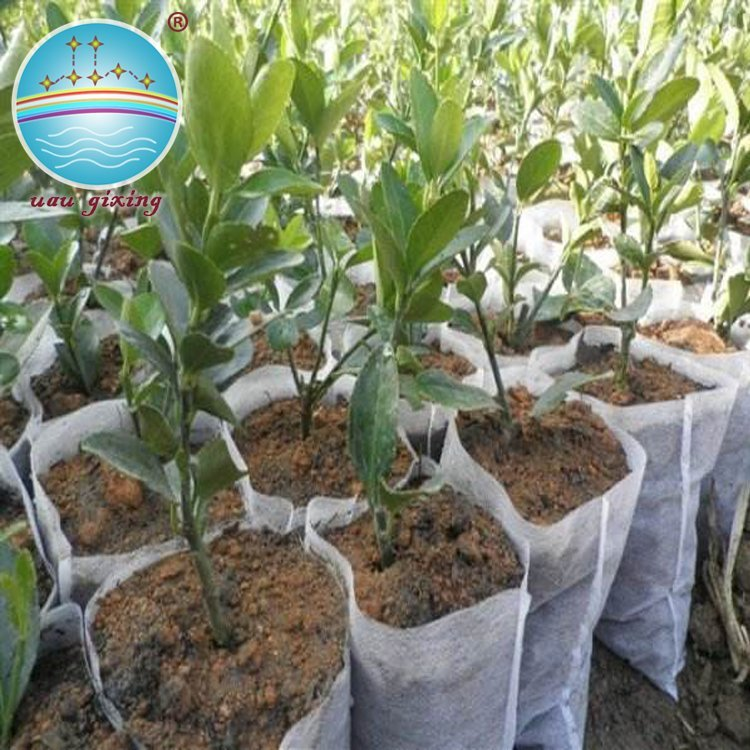 Anti-UV Durable Pp Nonwoven Fabric For Agriculture Plant Cover