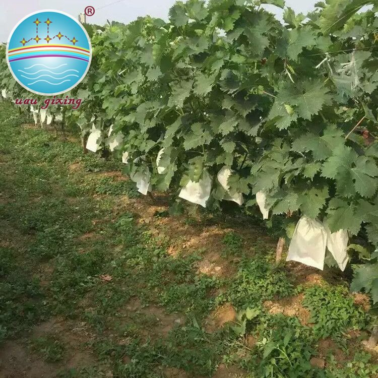 Eco-friendly Nonwoven Fabric For Making Friuts And Vegetables Cover Bags