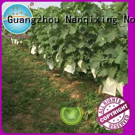best price weed control fabric friuts pp best weed control fabric Nanqixing Warranty