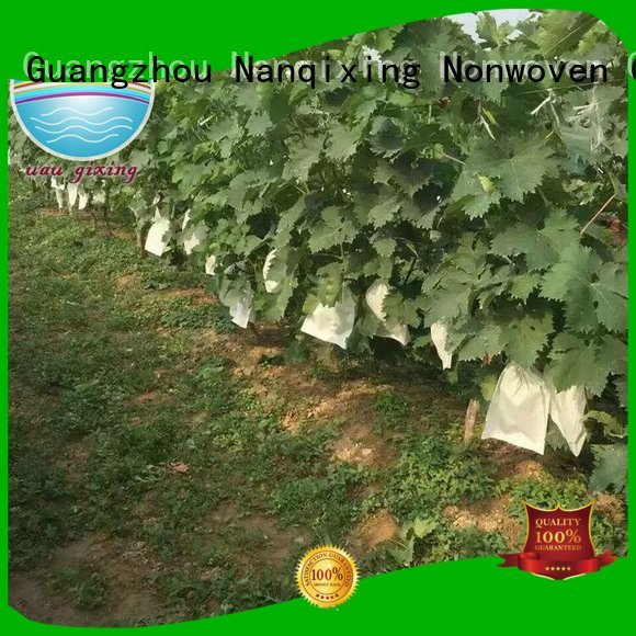 best price weed control fabric weed antiuv bags agriculture Bulk Buy