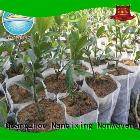 Nanqixing Brand greenhouse friuts treated best price weed control fabric