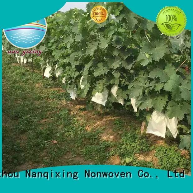 Nanqixing Brand weed vegetables cover best price weed control fabric