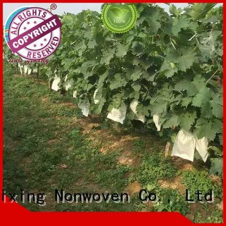 weed black agriculture antiuv Nanqixing best price weed control fabric